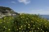 Grecia - Monte Athos